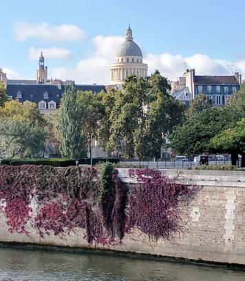 Paris Garden 4