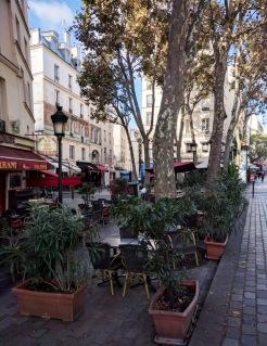 Paris Garden 5